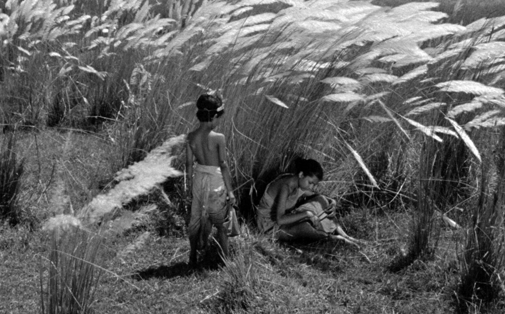 Two young people in a field of tall grass.