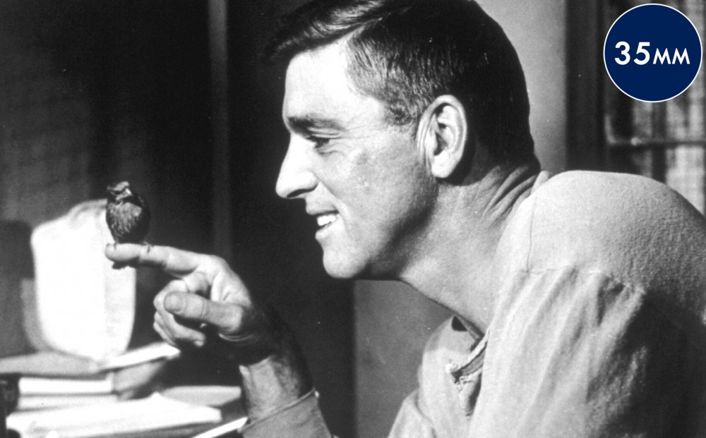 Actor Burt Lancaster, in profile, smiles at a small bird that is perched on his finger.