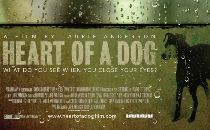 HEART OF A DOG DVD